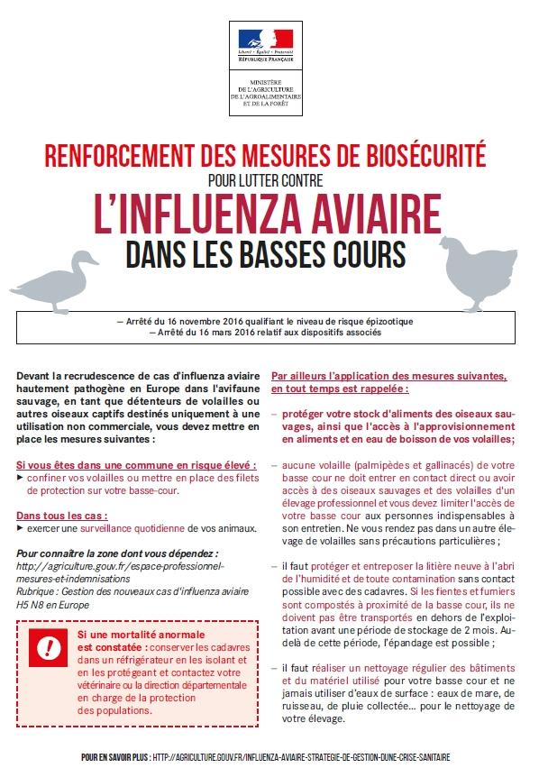 Relèvement du niveau de risque influenza aviaire